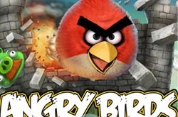Splash Screen Angry Birds