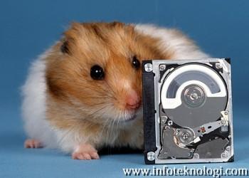 Harddisk buatan Hitachi dengan seekor hamster