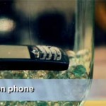 Tips jika handphone terkena air